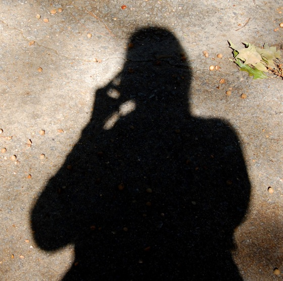 Shadow silhouette of a figure