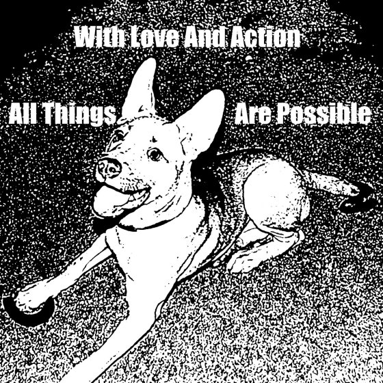 Wth Love And Action All Things Are Possible - Carmella Crouched