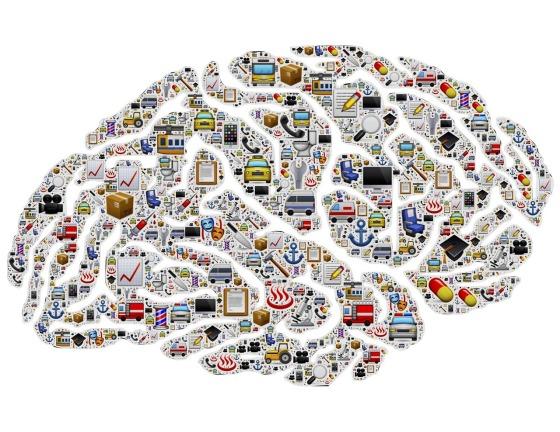 brain-activity